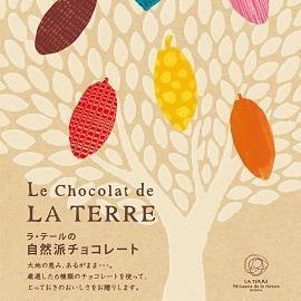 2021年 自然派チョコレート カタログ