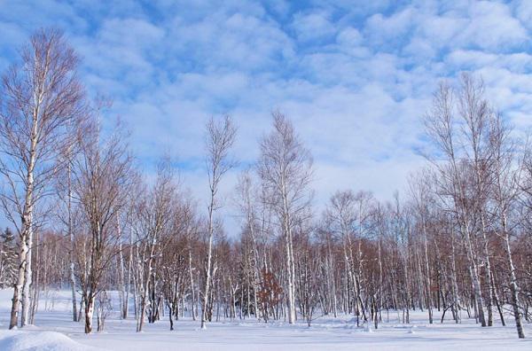 2018フェルム冬01.jpg