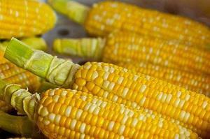 pop-corn-785074_640.jpg